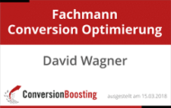 Fachmann Conversion Optimierung - David Wagner